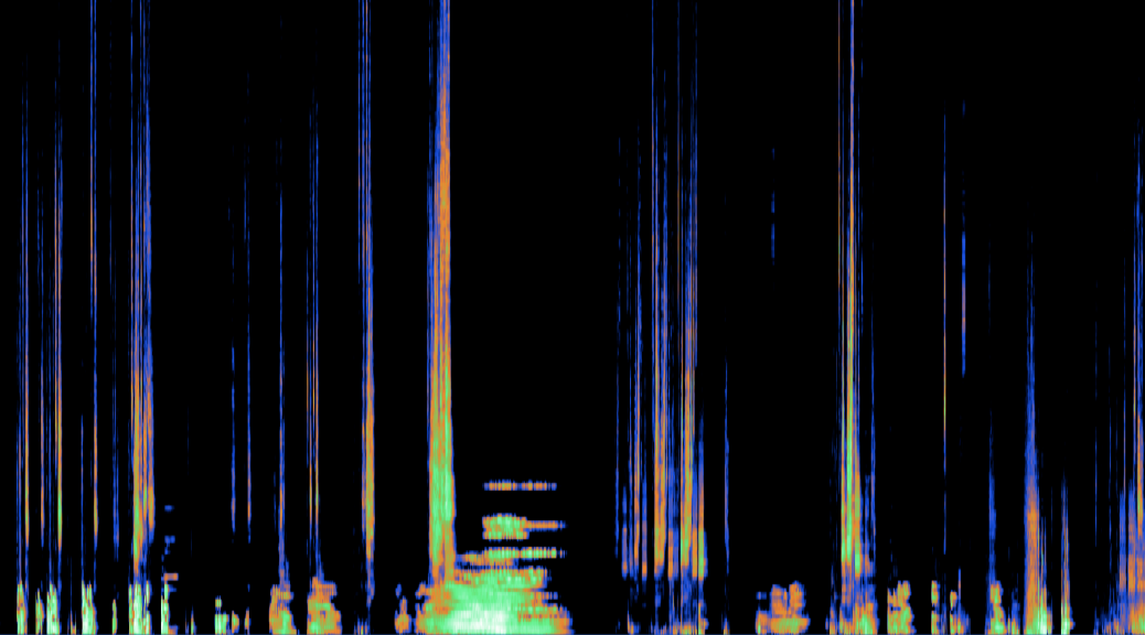 WITW_sona+waveform